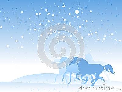 Horse herd in winter