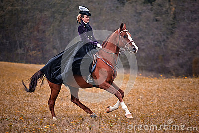 Horse-hunting with ladies in riding habit Editorial Image