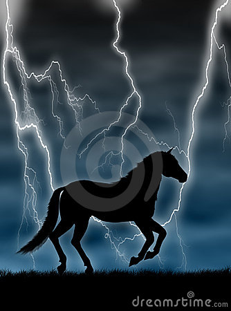 Free Horse In The Storm Royalty Free Stock Images - 4565919