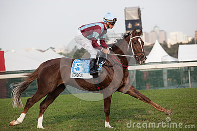 Horse Jockey Close-Up Racing Editorial Image