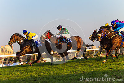 Horse Jockeys Racing Durban July Editorial Photography