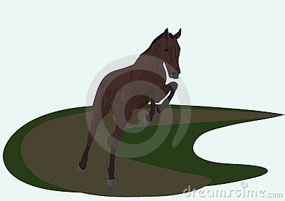 Horse in a jump