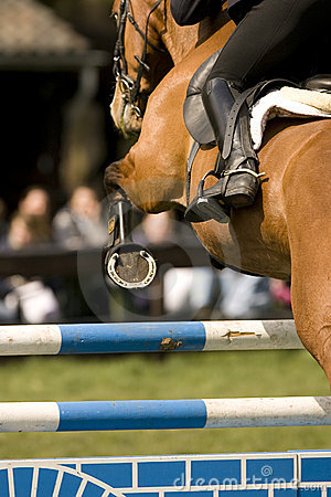 Horse Jumping 011