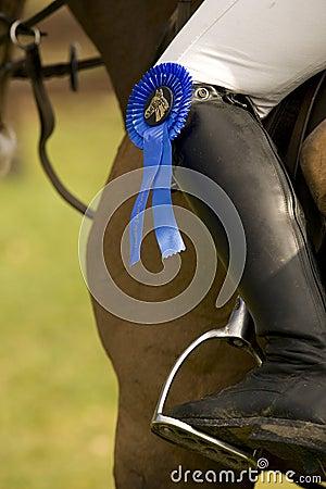 Horse Jumping 029