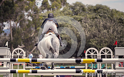 Horse Jumping Competition, Del Mar, California Editorial Image