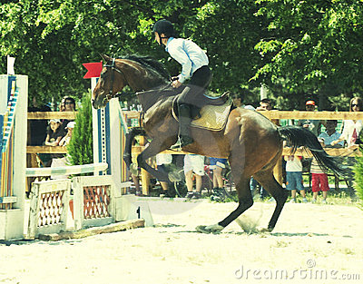 Horse jumping hurdles Editorial Stock Image