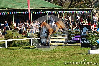 Horse jumping - Lara Neill Editorial Image