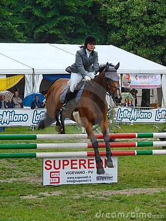 Horse jumping show Editorial Stock Image