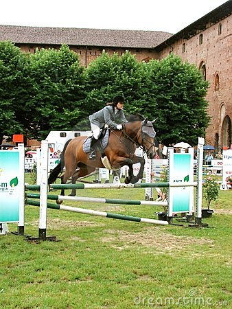 Horse jumping show Editorial Image