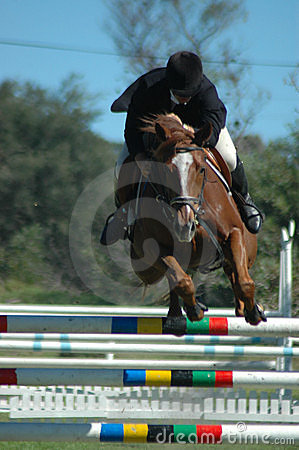 Free Horse Jumping Sport Royalty Free Stock Photography - 2250377