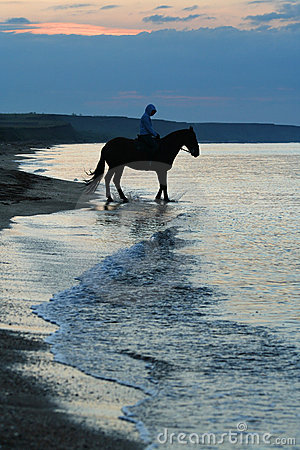 Horse and person / walk in the morning