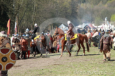 Horse preparing for the battle Editorial Stock Image