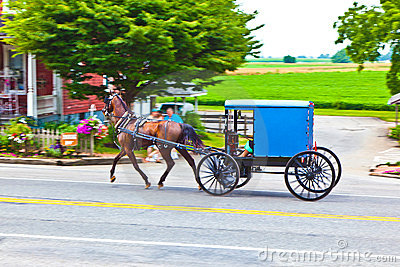 A horse pulling a cart across