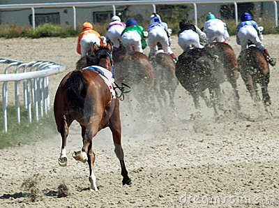 Horse race. Editorial Photography