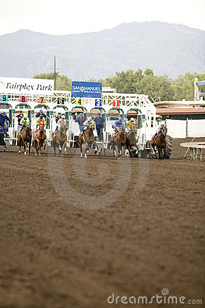 Horse Race 2 Editorial Photo