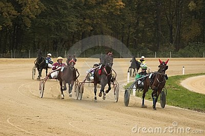 Horse race Editorial Stock Photo