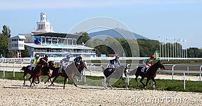 Horse race. Editorial Photo