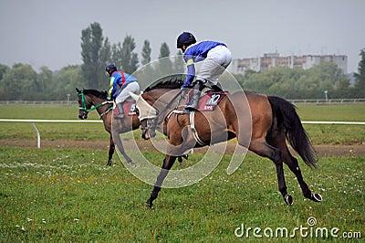 Horse race Editorial Stock Photo