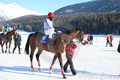 Horse Race on Snow Editorial Image
