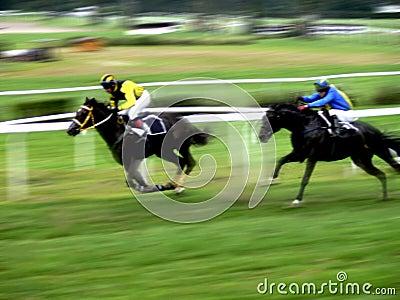 Horse race sprint