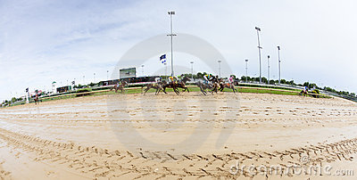 Horse races at Churchill Downs Editorial Stock Image