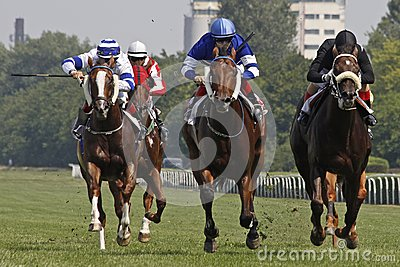 Horse racing_1 Editorial Stock Image
