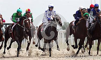 Horse racing. Editorial Stock Image