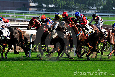 Horse racing Editorial Stock Image