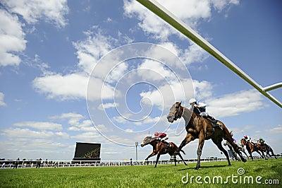 Horse Racing Editorial Stock Photo
