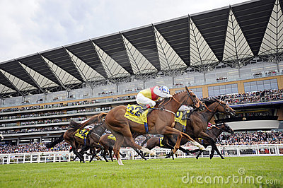 Horse Racing Editorial Photo