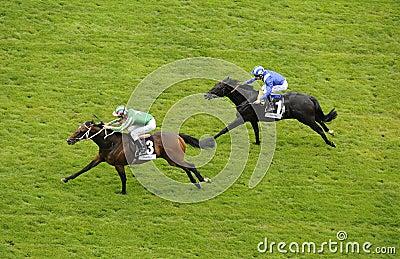 Horse Racing Editorial Image