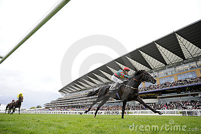Horse Racing Editorial Image