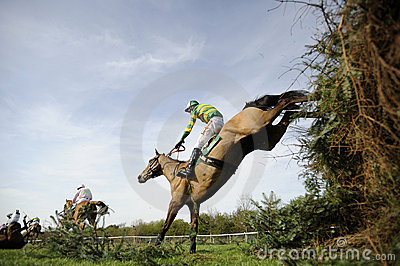 Horse Racing Editorial Photography