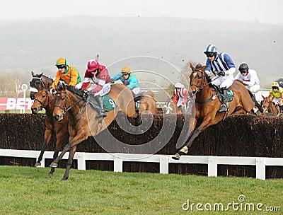 Horse Racing Editorial Photography