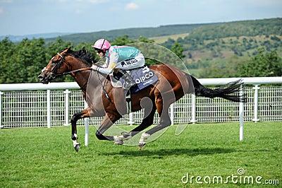 Horse Racing Editorial Stock Image