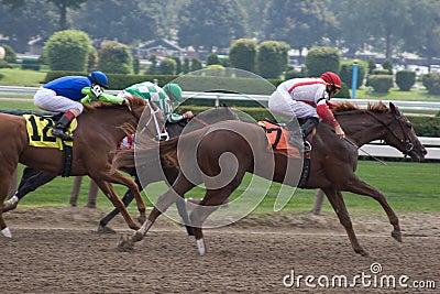 Horse Racing_6514-1S