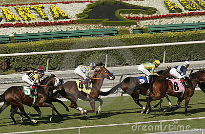 Horse Racing at Beautiful Santa Anita Race Track Editorial Photography