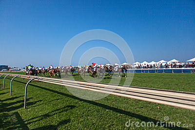 Horse Racing Final Straight Rail Editorial Photography