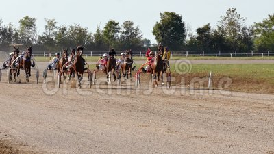 Horse Racing Harness racing på kapplöpning arkivfilmer