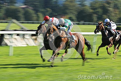 Horse racing - Hippospol prix race in Prague Editorial Stock Photo