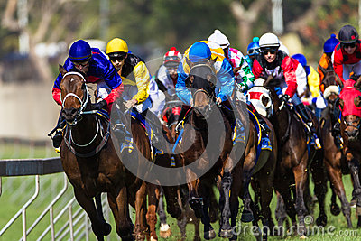 Horse Racing Jockeys Final Turn Editorial Image