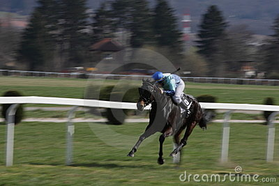 Horse racing in Prague 2011 Editorial Image