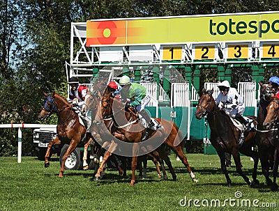 Horse racing start Editorial Stock Photo