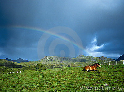 Horse and Rainbow, Lofoten Norway