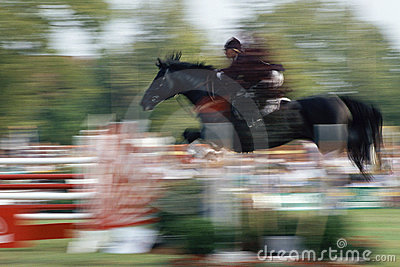 Horse and rider Editorial Stock Photo