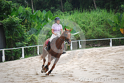 Horse Rider Editorial Stock Photo