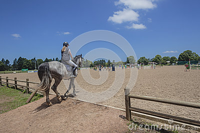 Horse Rider Equestrian Arena Editorial Photography