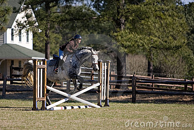 Horse and rider jumping hurdles