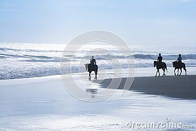 Horse riding tour kuta beach bali indonesia