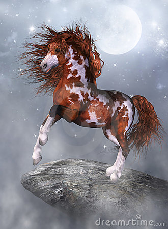 A horse on the rock
